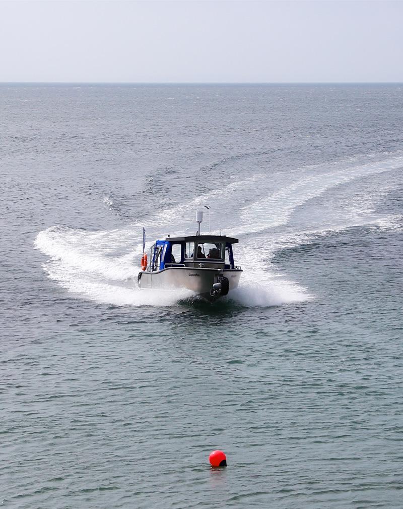 Glansteffan Ferry Cruising in Carmarthen Bay
